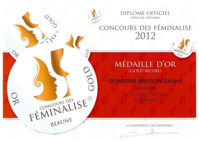 Médaille d'or Feminalise 2012