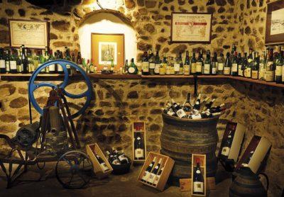 Tasting cellar of Domaine Gérard Brisson