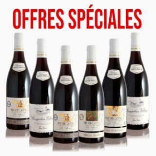 Special offers Domaine Gérard brisson