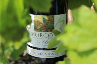 Détail de l'étiquette de la cuvée Morgon les Charmes Vieilles Vignes du Domaine Gérard BRISSON